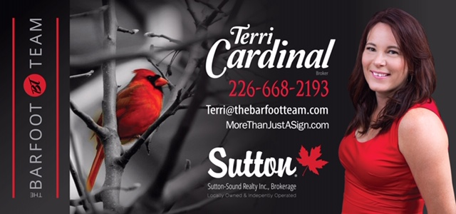 Terri Cardinal Real Estate